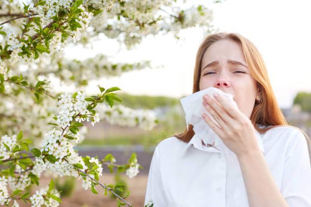 Cedar Pollen Allergy: Causes, Symptoms, Treatment